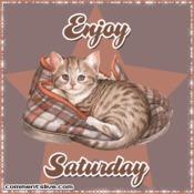Day Saturday