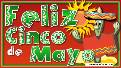 Feliz Cinco De Mayo picture